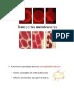 pp2_-_Transportes_membranares_1