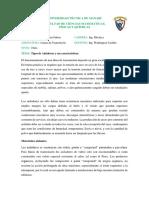fulton consulta.docx