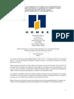 Reporte anual Homex