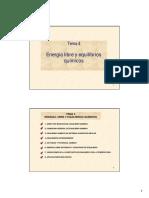 Tema 4_2.pdf