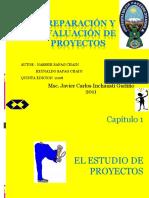 proyectos-cap-1.ppt