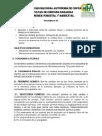 Informe Nº 04 Olivera