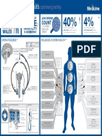 Male Reproductive Health FX Medicine Infographic