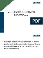 Elementos de Campo Profesional