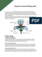 Truktur Morfologi Dan Anatomi Bunga Pada Tumbuhan