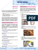 39321-39321-38FD-04-2009.pdf