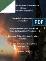 tesissss.pdf