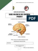Guia de BASES ORGÁNICAS DEL FENÓMENO PSIQUICO