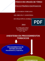 ANESTESIA EN TORAX.pdf