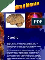 02 Cerebro y Mente