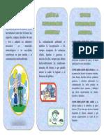 TRIPTICO1 DOME.docx