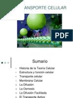 2.3.Transporte celular PRISCILA.pdf
