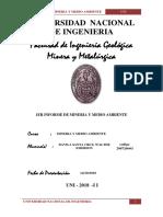 1ER INFORME MINERIA Y MEDIO AMBIENTE.DAVILA..docx