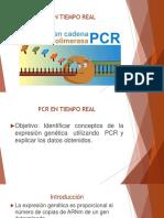 OPTIMIZACION DEL PCR EN TIEMPO REAL.pptx