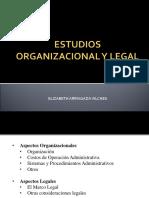 Estudio Organizacional Y Legal S