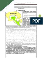 Cerebro Triuno Desarrollo Evolutivo Del Sistema Nervioso Central