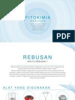 FITOKIM 1 PPT.pptx