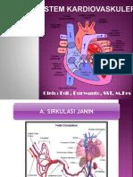 Sistem Kardiovaskuler