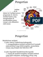 metabolisme poltekkes