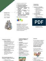 Brochurt - Brochur