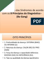 8 Princípios Do Diagnóstico MTC