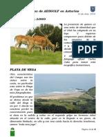 Ficha de la Playa de Vega (Asturias)