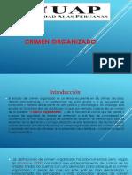 6 Evolucion del crimen organizado (6).pptx