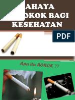 246809680-Penyuluhan-Rokok