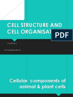 2-1-cell-structure-and-function.pptx