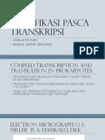 Modifikasi Pasca Transkripsi