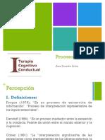 Procesos cognitivos ITCC