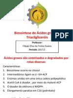 Biossintese de Acidos Graxos e Lipídeos