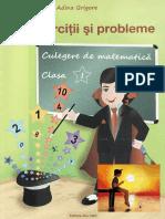 Exercitii-Si-Probleme-Clasa-1.pdf