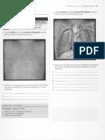 APR Worksheets - Digestive System