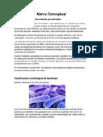 Morfologia de Las Celulas Procariotas