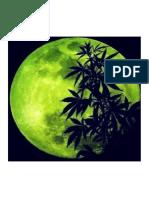 cannabis-moon.pdf