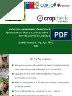 2_cropcheck_arandanos.pdf