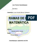 Ramas de La Matematica y Tipos de Numero