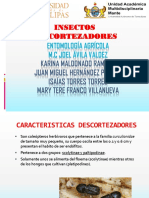 Entomología Agrícola Exposicion(2)