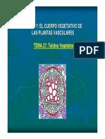 tema 27. tejidos vegetales.pdf