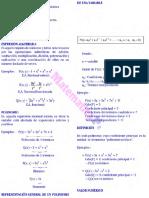 Cap 2 Polinomios Teoría Problemas (1)