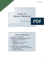 2 Tema 13 Genero Neisseria 2011 12