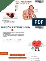 Trastornos de La Presion Arterial Miguel