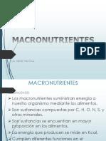 02. macronutrientesa.ppt