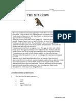 Rc Sparrow Middle A