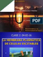 Biologia - MEMBRANA PLASMATICA (kinesiologia)