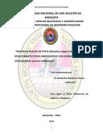 IPpaviab003.pdf