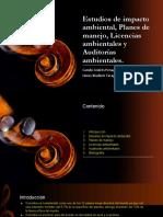 Estudios de Impacto Ambiental, Planes de Manejo2