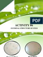 Activity 6- Plant Bio