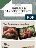 3 ANIMALS IN DANGER OF EXTINCT.pptx